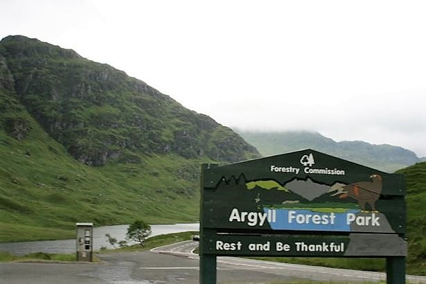 Argyll Forest Park road, Be Safe and Drive Carefully