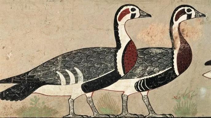 Egyptians kept many animals as pets