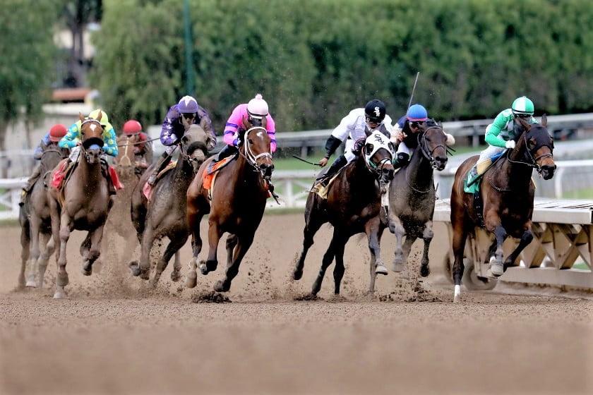 Santa Anita suffers 14th horse racing death this season
