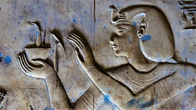 Some Egyptian doctors had specialized fields of study